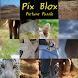 Pix Blox Picture Puzzle