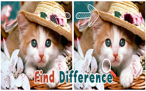 Find 5 Difference : Cats
