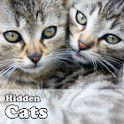 Hidden Object Games - Cats icon