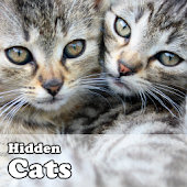 Hidden Object Games - Cats