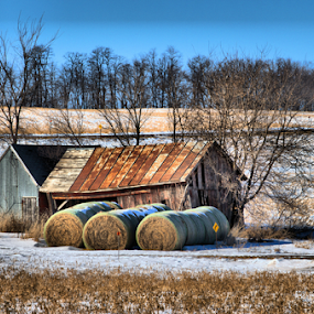 If I Could Turn Back Time by Michael Priest - Landscapes Prairies, Meadows & Fields ( field, farm, shed, wisconsin, winter, snow, hay, trees )