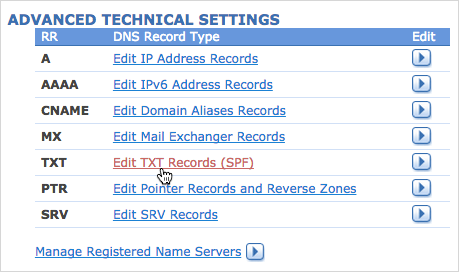 Edit TXT Records option