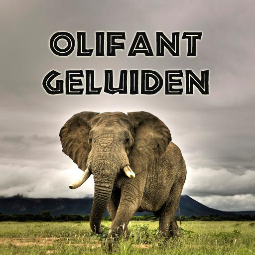 Olifant geluiden