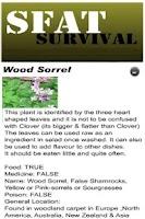 Screenshot of Edible Plants Survival [SFAT]