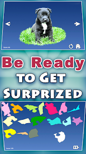 Shape Puzzles Pro - Assemble- screenshot thumbnail