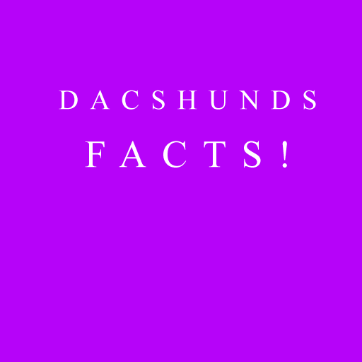 Dachshund Facts 娛樂 LOGO-阿達玩APP