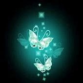 3D butterfly 09