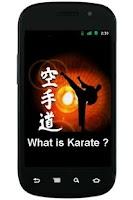 Screenshot of What is Karate ?