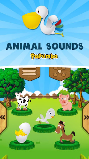 Animal Video Sounds for Kids Animal Sounds Real Animals ...