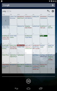 Business Calendar Pro Screenshot 24