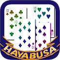 HAYABUSA Ten logo