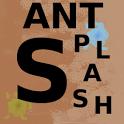 AntSplash beta icon
