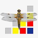 Libellen van Nederland icon