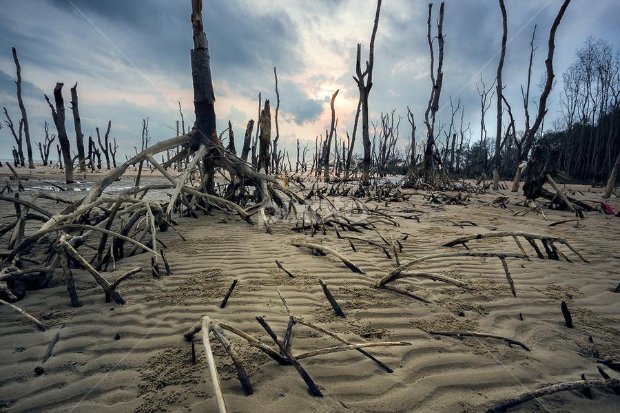 by Kelvin Shutter - Landscapes Deserts