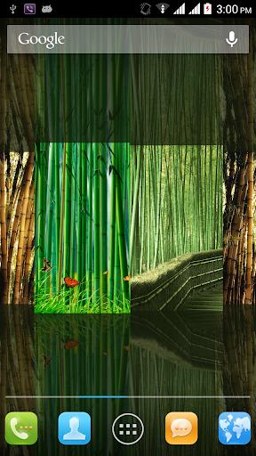 竹のライブ壁紙