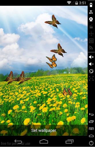 3D Butterfly LiveWallpaper