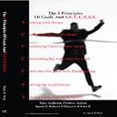 8 Principles Goal&Success LITE