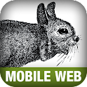 Programming the Mobile Web logo