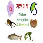 자연 ( 꽃, 잎, 곤충, 버섯, 물고기 ) 영상인식