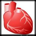 Wiki anatomy icon