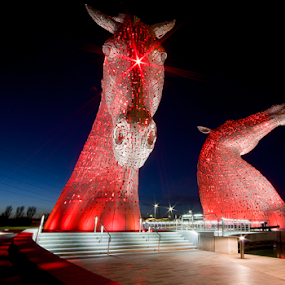 The Kelpies by Grzegorz Gluchy - Buildings & Architecture Statues & Monuments ( scotland, horse, penatx, night, light )