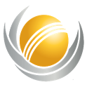 2013 ICC Championship Cricket icon