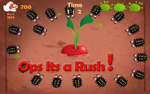 Radish And Pest