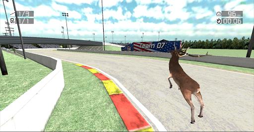 Animal Racing: Deer