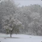 Snowing Live Wallpaper HD 4 icon