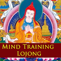 Mind Training icon