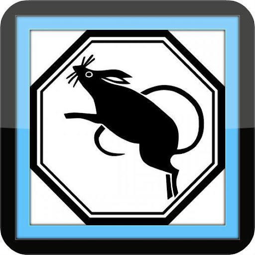 Pest Control - Best Tips