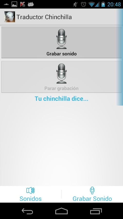 Chinchilla Translator - screenshot
