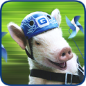 GEICO Piggy's Pin-Wheeels icon