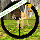 LION HUNTING 2015 3D