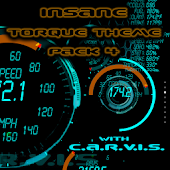 Torque 48 Pack and Editor OBD2
