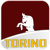 Torino Football News