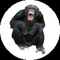 Animal Talkies Free icon