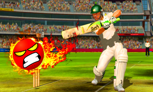 Angry Cricket Game