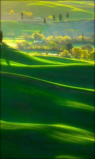景观态动壁纸