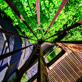 The rusty way down by Andrew Hale - Buildings & Architecture Decaying & Abandoned ( ladder, climb, old, rust, abandoned, distillery, building )