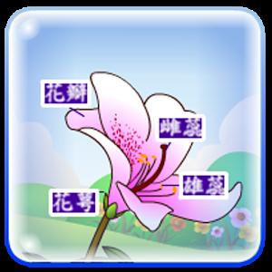 花朵的秘密(繁體中文版) LOGO-APP點子