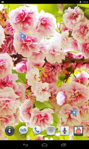 Sakura Beautiful LWP