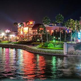 Hard Rock cafe Florida by Richard Ryan - City,  Street & Park  Night ( colourful, hard rock cafe, florida, nightscape,  )