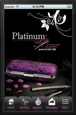 Platinum Style