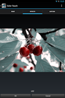 Screenshot of Color Touch Effects