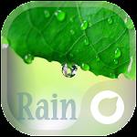 Rain - Solo Theme v1.0