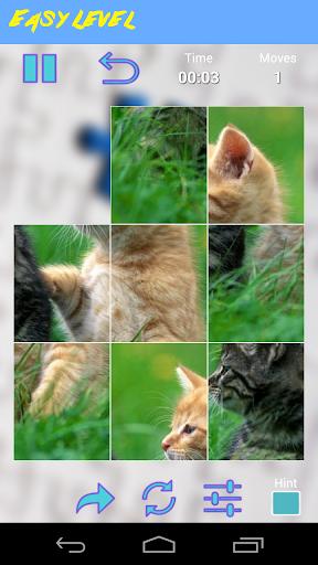 解謎必備APP下載|Funny Cats Jigsaw Puzzle 好玩app不花錢|綠色工廠好玩App