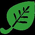 iHerb - Logo