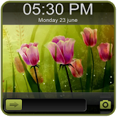 Tulip Go Locker EX Theme