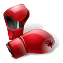 Boxing Quotes icon